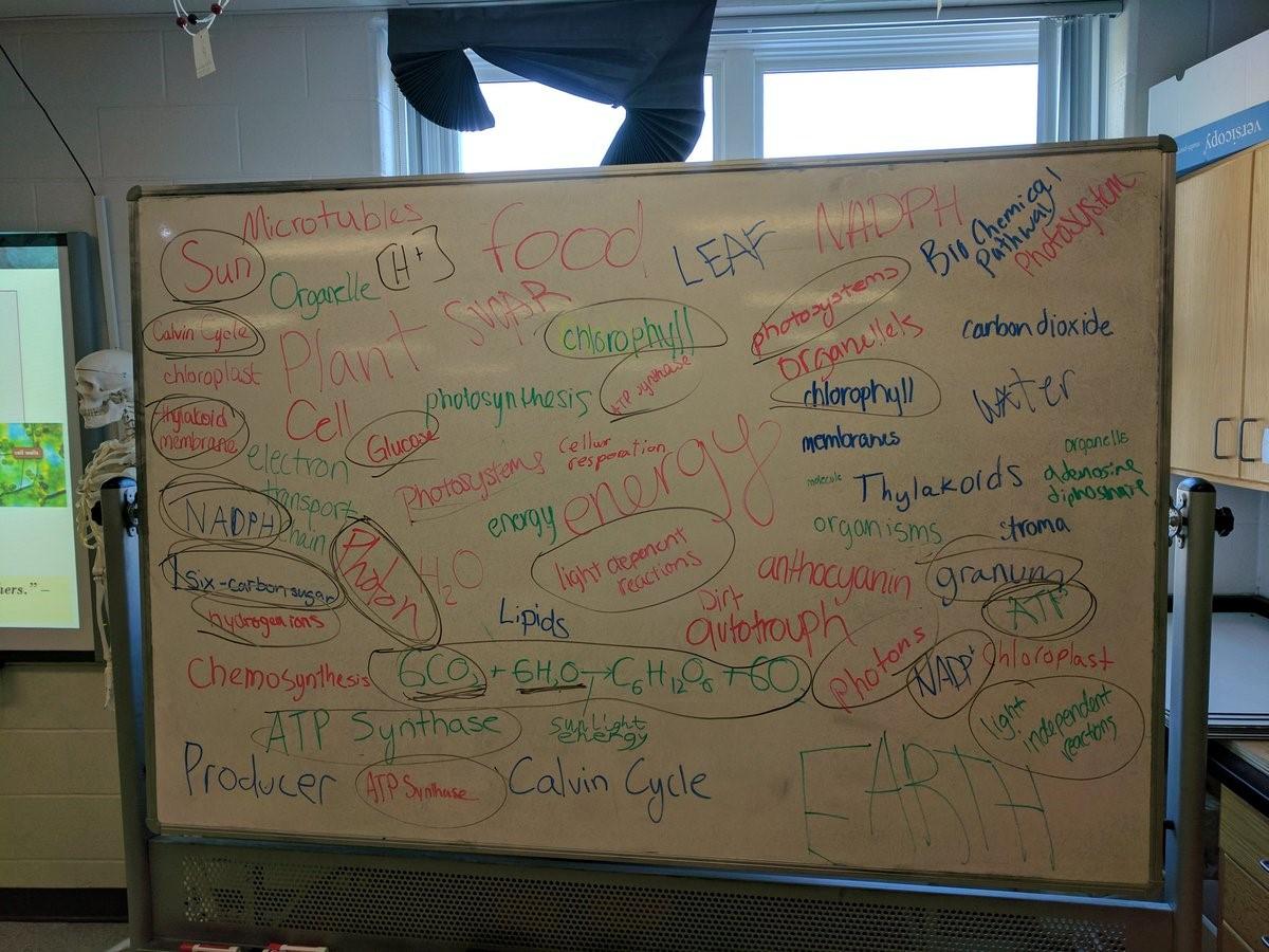 Photosynthesis Board Talk in Mr. Keyes Classroom