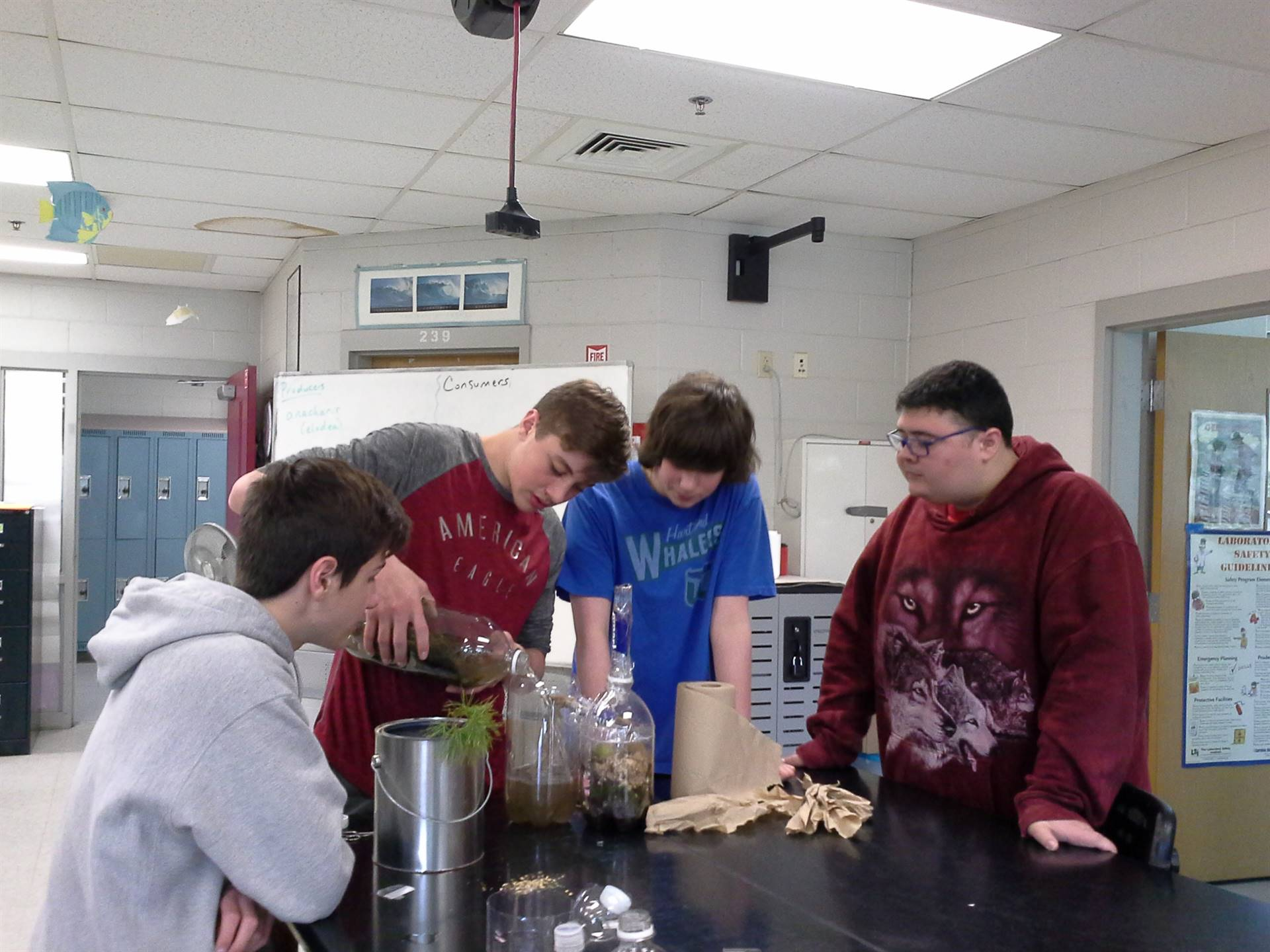 """Honors Biology setting up and sealing their """"little worlds"""""""