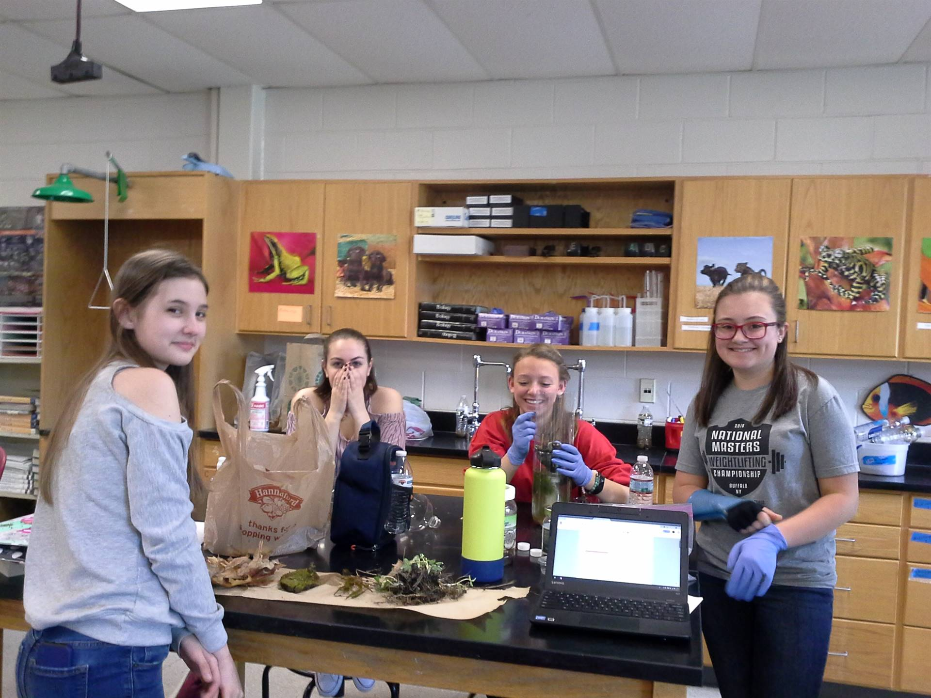 Honors Biology setting up and sealing their model ecosystems