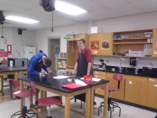AP Biology- testing