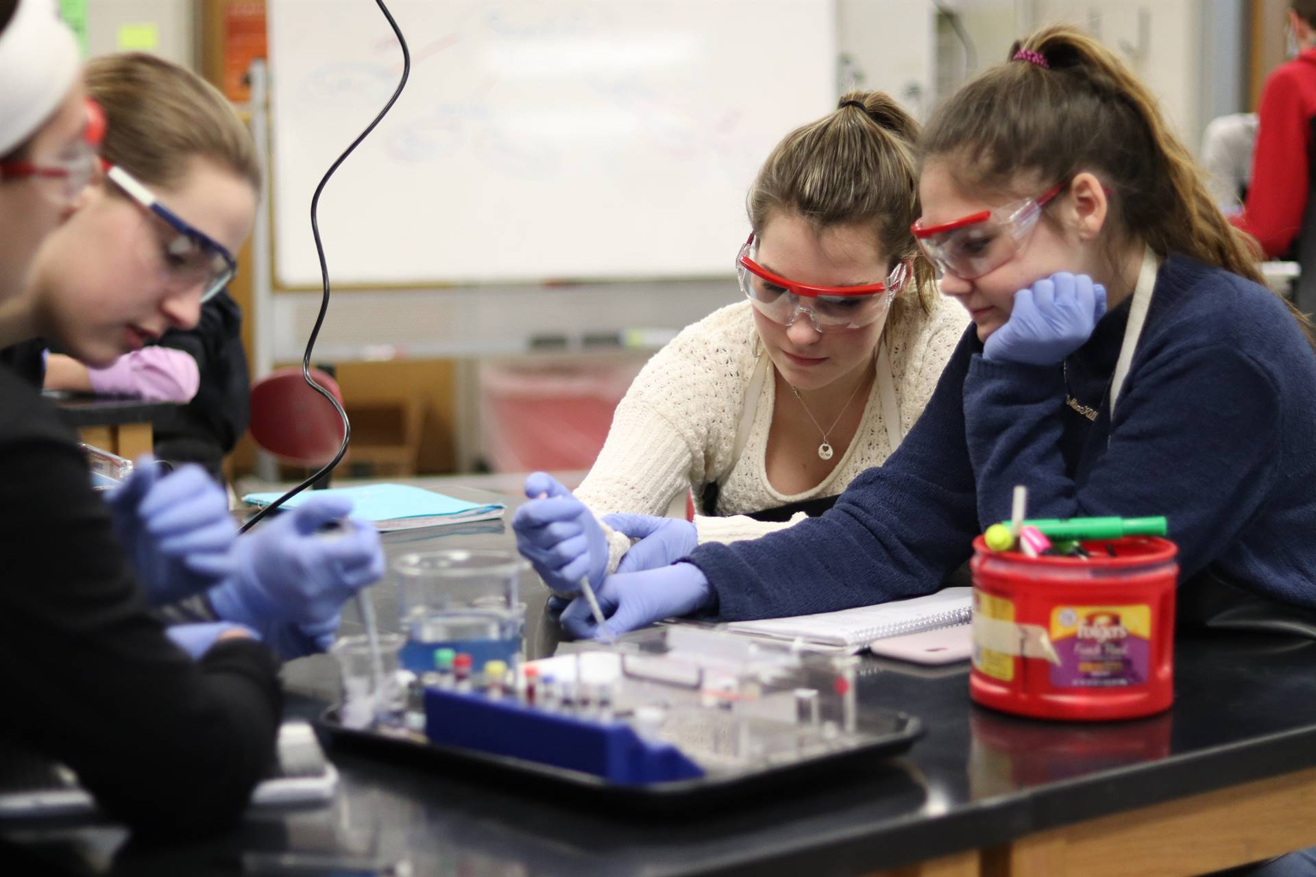 Biology students creating a gel lab